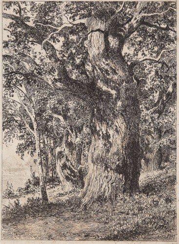Ivan Ivanovich Shishkin - An Old Oak