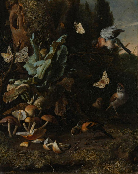Hondecoeter, Melchior de - Animals and plants