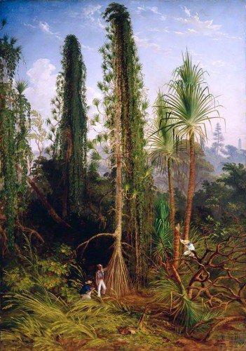 Thomas Baines - Pandanus
