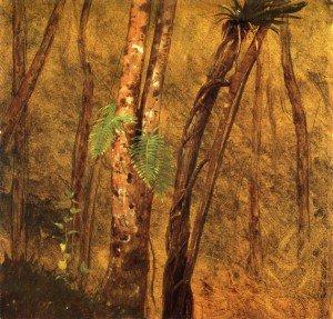 Frederic Edwin Church - Plant Study, Jamaica, West Indies