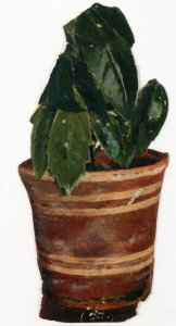 Edvard Munch - Potted Plant