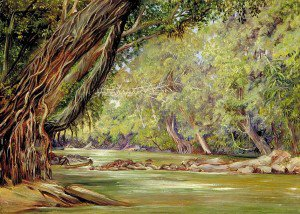 Marianne North - Cobweb Bridge in Borneo, Made by the Dyaks with Rattans and Bamboos